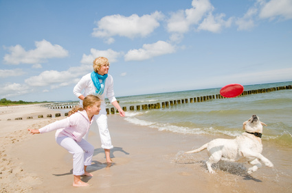 Famille jouant avec son chien à la plage